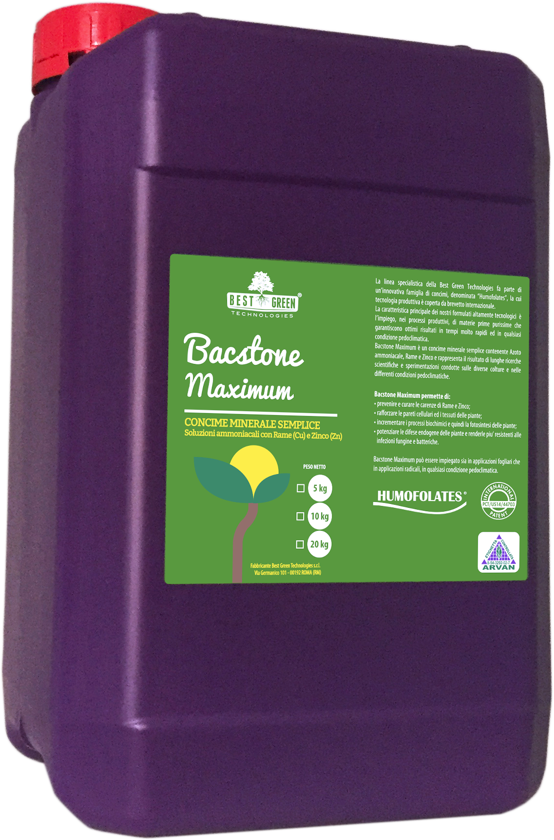 Bacstone Maximum